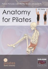 Anatomy for Pilates